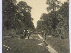 L'allée du Ménillet qui donne à la grille du château Singer 1935/36