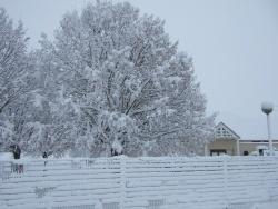Photo paysage et monuments, Esmans - sous la neige