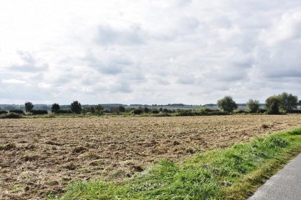 le champs