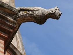 Photo paysage et monuments, Saint-Sulpice - église St Sulpice 13 Em Siècle ( Gargouille )