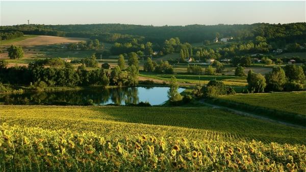 Photo Montauban - Une jolie vue