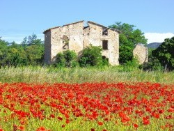 Photo de Baudinard-sur-Verdon