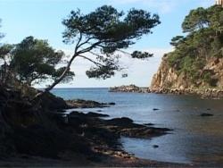 Photo paysage et monuments, Le Lavandou - LE FORT DE BREGANCON