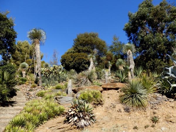 Domaine de Rayol, le jardin des Méditerranées