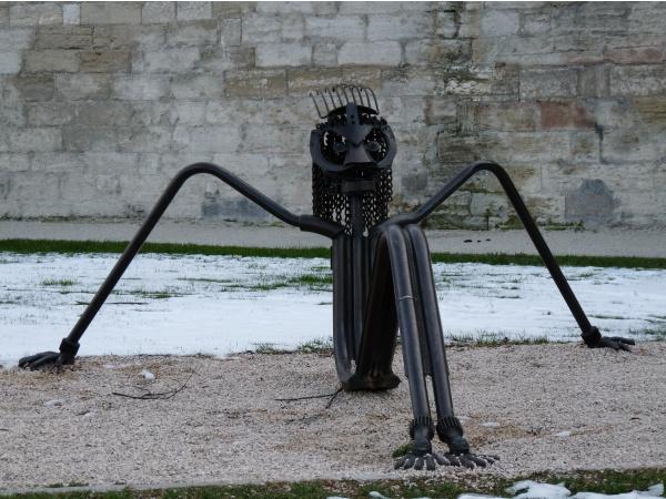 """Photo Avignon - le """"zoulou"""" au bord du rhône"""