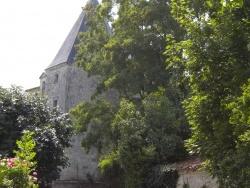 Photo paysage et monuments, Le Poiré-sur-Velluire - château du Chatellier