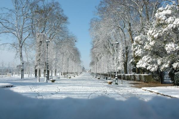Photo Poitiers - blossac sous la neige