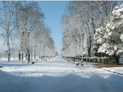 Photo paysage et monuments, Poitiers - blossac sous la neige