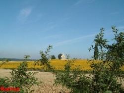 Photo paysage et monuments, Ranton - Ranton:  chapelle de Saint Martin