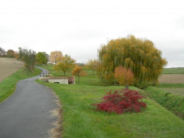 Photo Ranton - Couleurs d'automne.