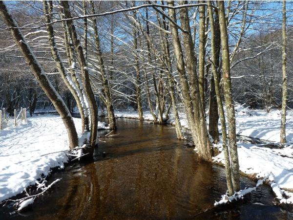 Photo Saint-Sulpice-Laurière - étang de la Papeterie St Sulpice Laurière froid