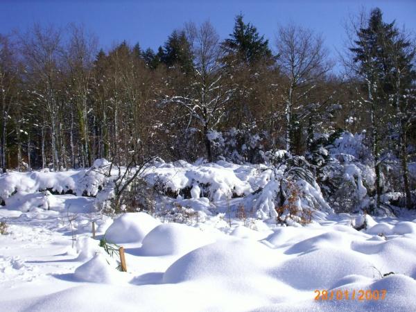 Photo Saint-Sulpice-Laurière - Gaudeix après la tempête de neige