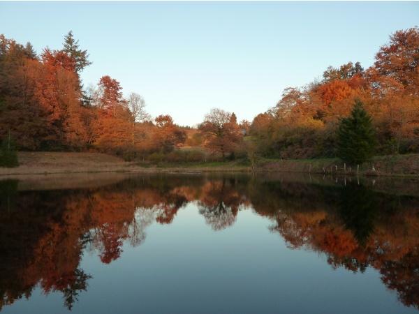 Photo Saint-Sulpice-Laurière - automne en Limousin