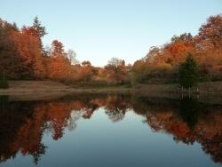 Photo paysage et monuments, Saint-Sulpice-Laurière - automne en Limousin