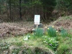 Photo paysage et monuments, Saint-Sulpice-Laurière - hommage à un cycliste décédé, Bois des Echelles 3è épingle