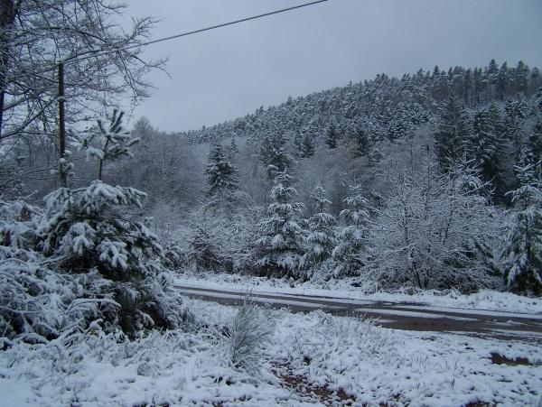 Neige en forêt Evaux et menil