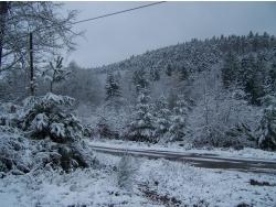 Photo paysage et monuments, Évaux-et-Ménil - Neige en forêt Evaux et menil