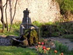 Photo de Tignécourt