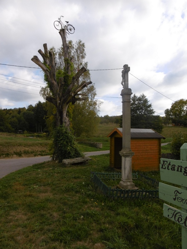 """Photo Les Voivres - Au Moulin des Voivres : """"le chêne"""" du vélo"""