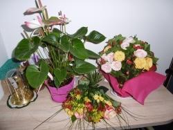 Les fleurs offertes