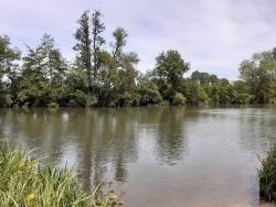 Au bord du Loir