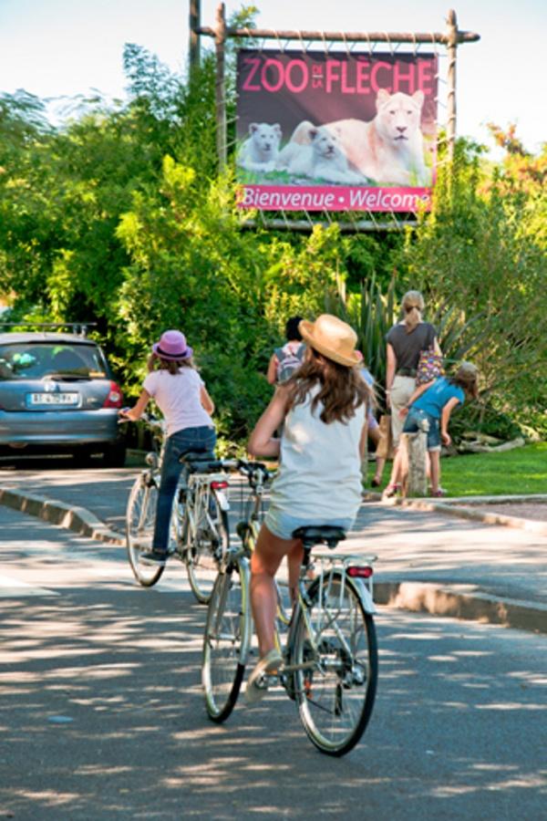 Du vélo au zoo