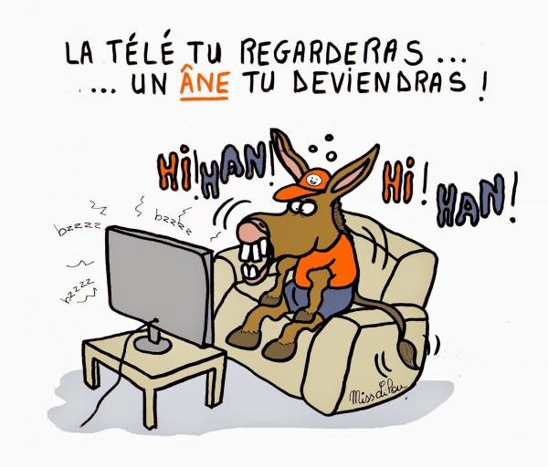 La Télé ai regardé... un âne suis devenu