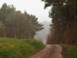 Photo paysage et monuments, Aisy-sur-Armançon - Aisy-sur-Armançon et ses alentours