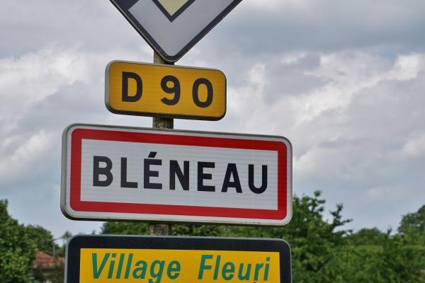 Photo Bléneau - Bleneau (89220)