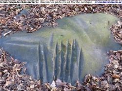 Photo paysage et monuments, Souzy-la-Briche - Le polissoir, en forêt de la Guigneraie, à Souzy-la-Briche