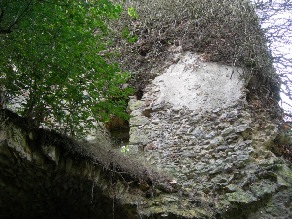 Ruines du Chateau de la Grange (Villeconin)
