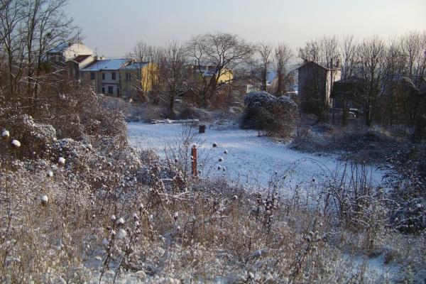 Photo Montreuil - Le parc des Beaumonts sous la neige à Montreuil/bois.