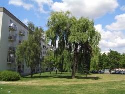 Photo paysage et monuments, Créteil - Créteil